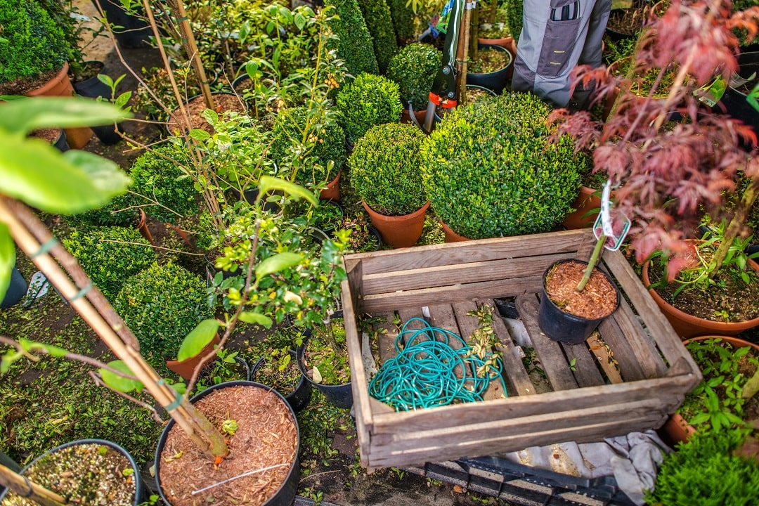 rent-a-dumpster-for-landscaping-projects-in-san-jose